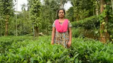 Farmer 13